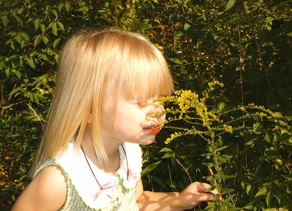 Polenska alergija kod dece