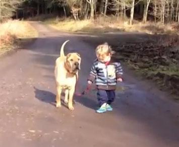 Dečak, barica i pas