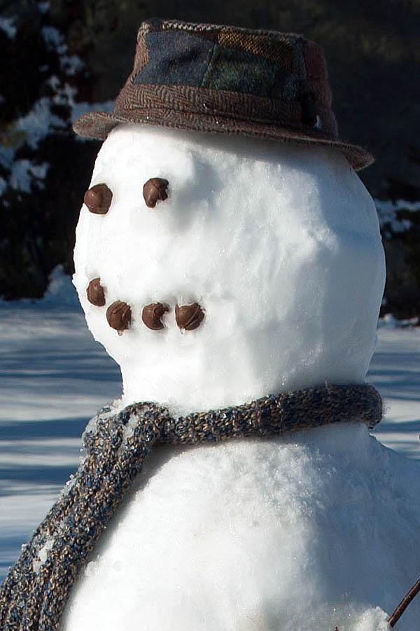Kako da napravite Sneška Belića