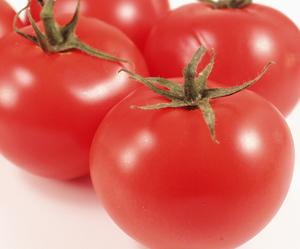Zdrava hrana za trudnice – 15 sjajnih namirnica paradajz