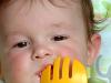 Priprema za uvođenje čvrste hrane u bebinu ishranu
