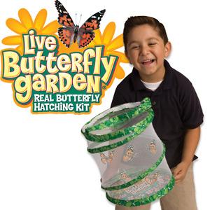 Basta zivih leptira - edukativna igračka
